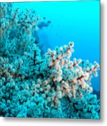 Underwater Cherry Blossom Metal Print