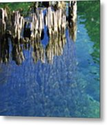 Underwater Cypress Stump Metal Print