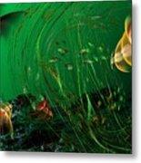 Underwater Wonderland  Diving The Reef Series. Metal Print