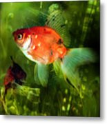Underwater World Metal Print