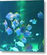 Underwater05 Metal Print