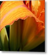 Unfolding To Orange Metal Print