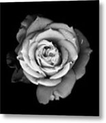 Unity Metal Print by Deborah J Humphries