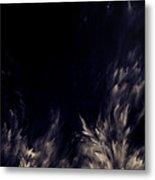 Unknown Light Metal Print