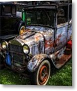 Unruly But Practical Metal Print