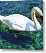Unusual Beauty Metal Print