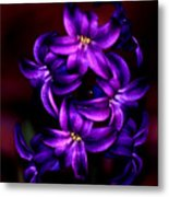 Up Close And Purple Metal Print