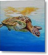 Up For Some Rays Metal Print
