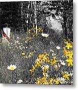 UP Wildflowers II Metal Print