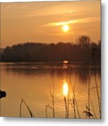 Upon Golden Ponds Metal Print