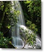 Upper Catawba Falls Metal Print