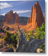 212645-upper Cathedral Valley  Metal Print