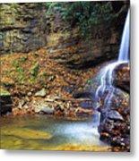 Upper Falls Holly River Metal Print