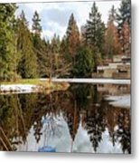 Upper Pond Reflections Metal Print