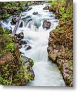 Upper Rogue River Metal Print