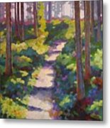 Urban Trail Climb Metal Print