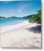 Us Virgin Islands, St. John, Cinnamon Metal Print