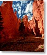 Utah - Bryce Canyon Metal Print