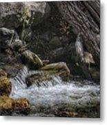 Utah Stream Metal Print