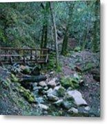 Uvas Canyon Bridge Metal Print