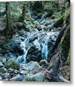 Uvas Canyon Waterfall I Metal Print