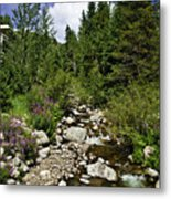 Vail Stream In The Summer 2 Metal Print