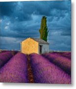 Valensole Shed Metal Print