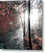 Valley Creek Sunrise Metal Print