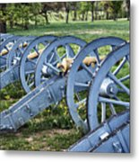 Valley Forge Artillery Park Metal Print