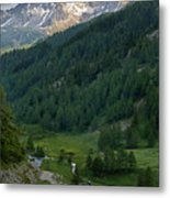 Valley In The French Alps Metal Print