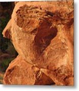 Valley Of Fire - Nevada's Crown Jewel Metal Print by Christine Till