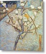 Van Gogh: Peartree, 1888 Metal Print