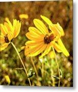 Variableleaf Sunflower Metal Print