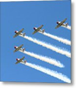 Vee Formation Metal Print