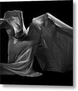 Veiled Metal Print