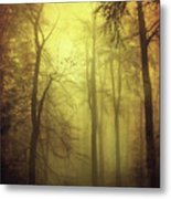 Veiled Trees Metal Print