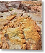 Vein Of Gold In Valley Of Fire State Park Metal Print
