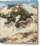 Ventura Dunes I Metal Print