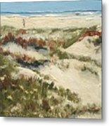 Ventura Dunes II Metal Print