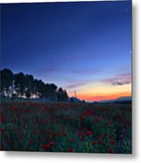 Venus And Moon Over Spring Poppies Metal Print