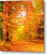 Vermont Autumn Metal Print