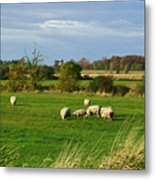 Vermont Country Life Metal Print