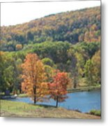 Vermont Pond Metal Print by Lyn Vic