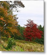 Vermont Roadside Color Metal Print