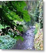 Vernon Creek Metal Print