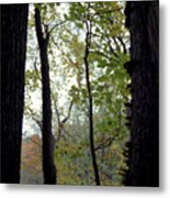 Vertical Limits Metal Print