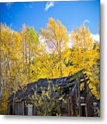 Vertical Shot Of Meagher's Cabin Metal Print