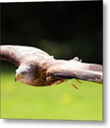 Very Low Pass Metal Print