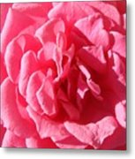 Very Pink Mini Metal Print
