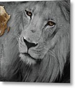 Very Sad Lion, Cry For Africa Metal Print